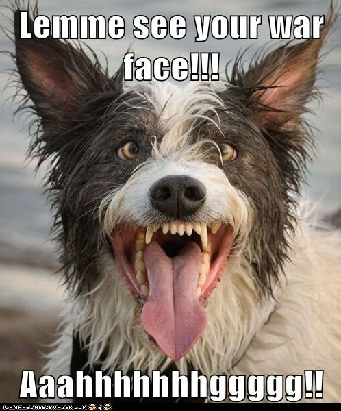 arrg awesome caption derp dogs funny face goggies Hall of Fame rawr tongue tongue out war face whatbreed - 5894678016