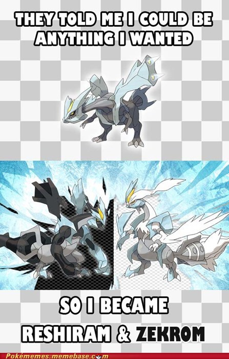black and white 2,fusion,i could be anything i wanted,kyurem,meme,Memes,reshiram,zekrom