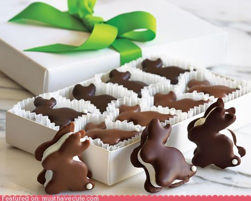 bunnies chocolate cookies epicute marshmallow smores - 5895696640
