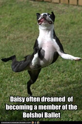 Daisy often dreamed of becoming a member of the Bolshoi Ballet
