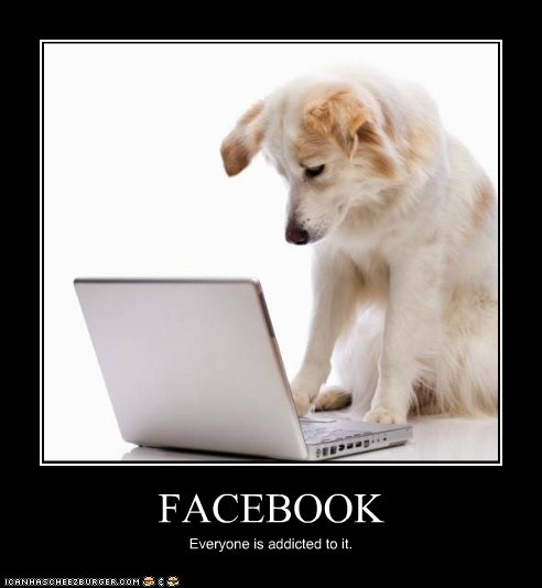 FACEBOOK Everyone is addicted to it.