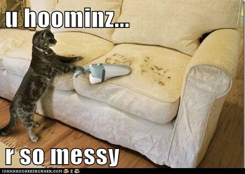 cleaning couch humans messy so vacuum - 5897269504