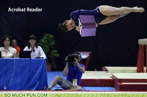 acrobat,adobe,computer,double meaning,gymnast,literalism,program,reader,semantics