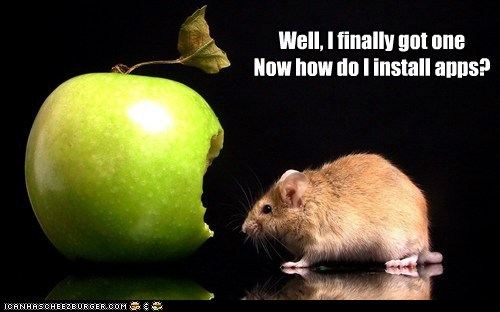 apple,Apple product,apps,caption,food,iphone,mice,mouse,rats,rodents,smart phone