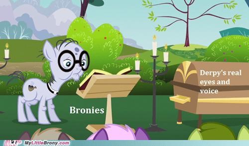 Bronies derpy hooves funeral meme Sad - 5899492608