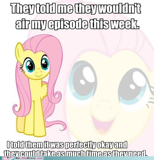 fluttershy love and tolerate meme new episode - 5900657152