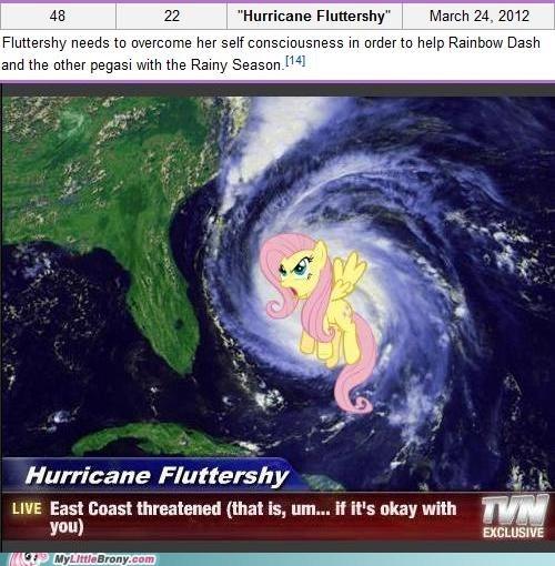 cute fluttershy hurricane new episode TV - 5900872960