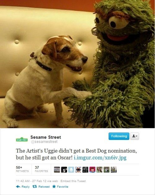 oscars,Sesame Street,So This Happened,uggie
