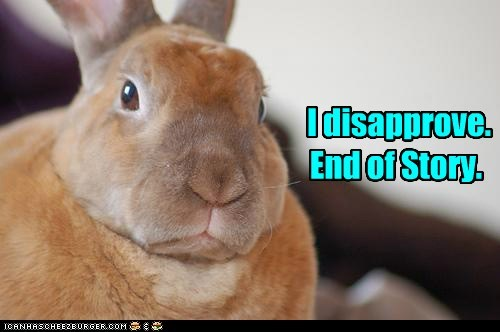 bunnies bunny caption disapprove disapproving end of story i-dont-like-it no rabbit - 5902492416
