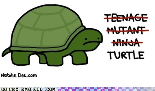 best of week emolulz honesty TMNT turtle - 5902633472