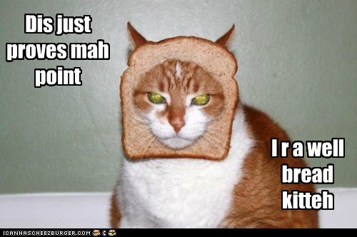 Dis just proves mah point I r a well bread kitteh
