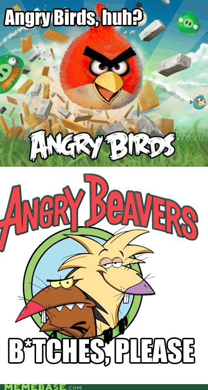 angerbirds angry beavers cool hipster Memes - 5903102976