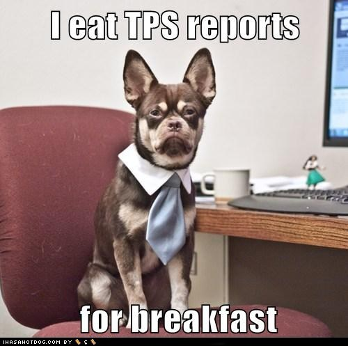 business business dog computer desk employment Hall of Fame job mixed breed Office official tie tps reports whatbreed work - 5903106560