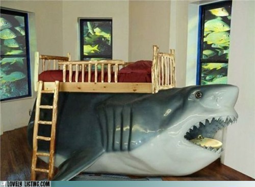 awesome,bunk bed,jaws,shark