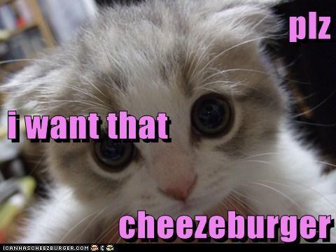 plz  i want that cheezeburger