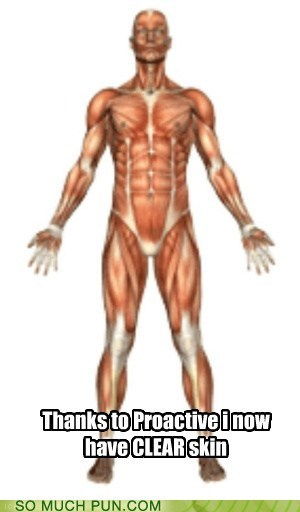 body clear diagram double meaning human literalism muscles skin - 5904281344