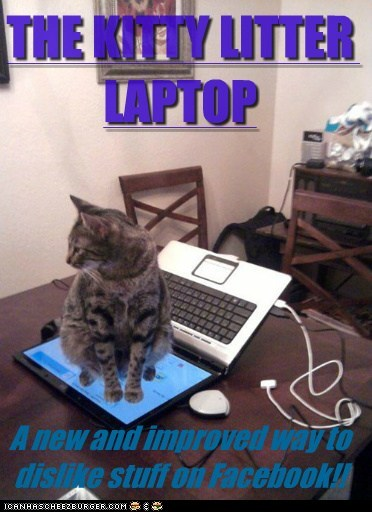 caption,cat litter,Cats,dislike,facebook,improved,kitty litter,laptop,new