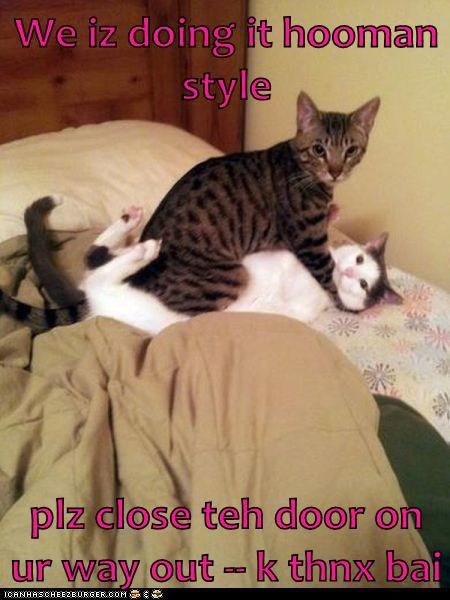 Cheezburger Image 5905143808