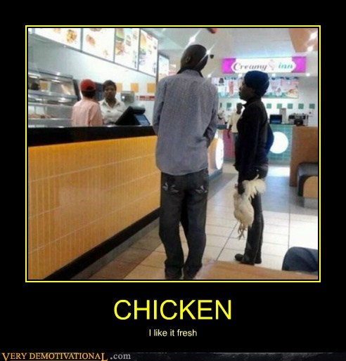 chicken fresh hilarious wtf