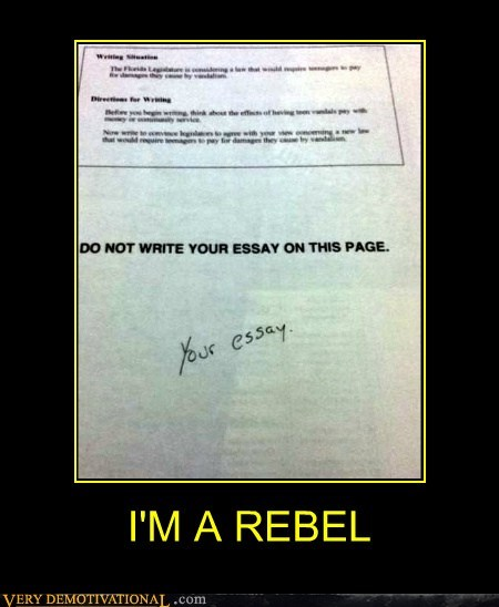 essay,hilarious,jerk,rebel,student