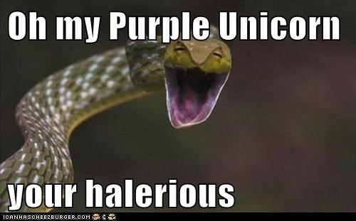 Oh my Purple Unicorn your halerious