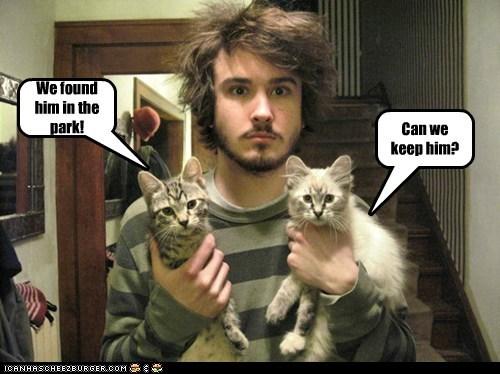 do want found human keep kitten park question we - 5906918656