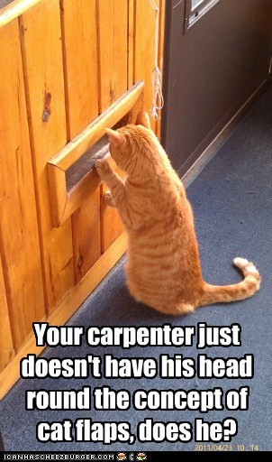annoyed carpenter cat construction disappointed door flaps mail slot - 5906938112