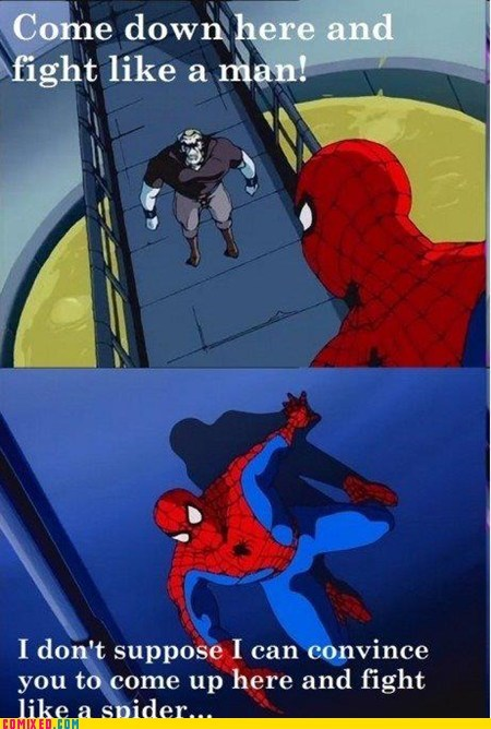 cartoons,fight,fight like a man,spider,Spider-Man,Super-Lols