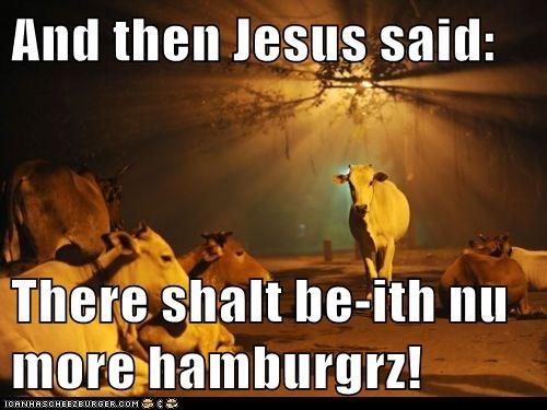 Cheezburger Image 5907130624