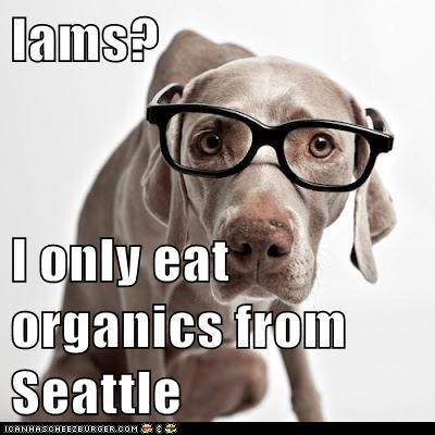 dog food food glasses noms organic organic food weimaraner - 5907228160