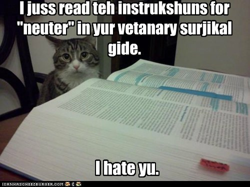 "I hate yu. I juss read teh instrukshuns for ""neuter"" in yur vetanary surjikal gide."
