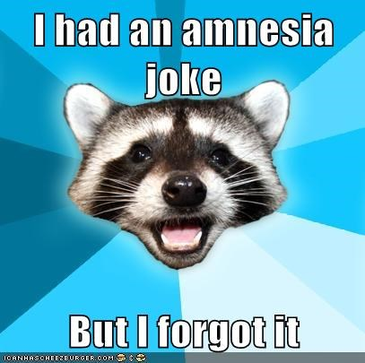 amnesia forgetfulness jokes Lame Pun Coon memory - 5907337216