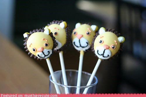 cake pops,chocolate,epicute,face,lion,smile,sticks