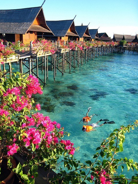blue bungalow bungalows clear blue water french polynesia getaways ocean snorkel snorkeling tahiti Tropical vacation