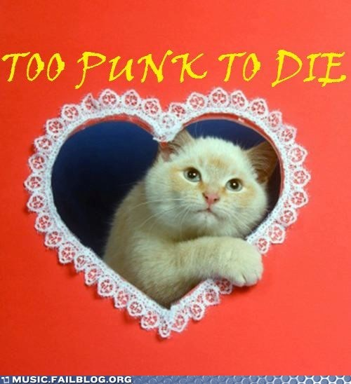 cat,punk,valentine