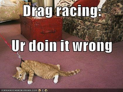 do not want doing it wrong drag dragging leash racing
