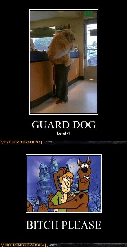 dogs,hilarious,scared,scooby doo,wtf