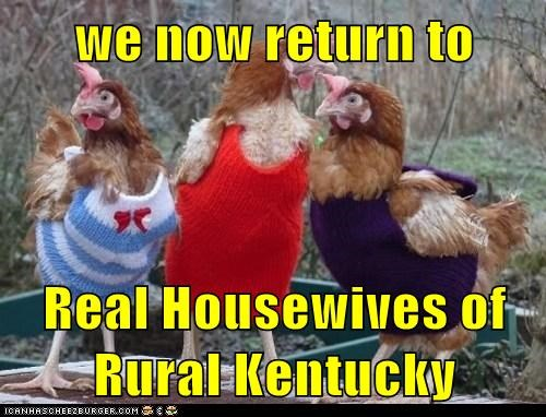 best of the week birds bravo chickens Hall of Fame hens kentucky real housewives rural