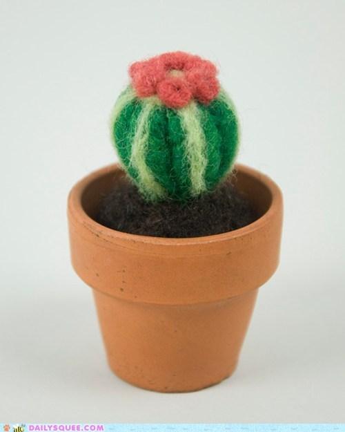 cactus felt huggable soft wool - 5908770816