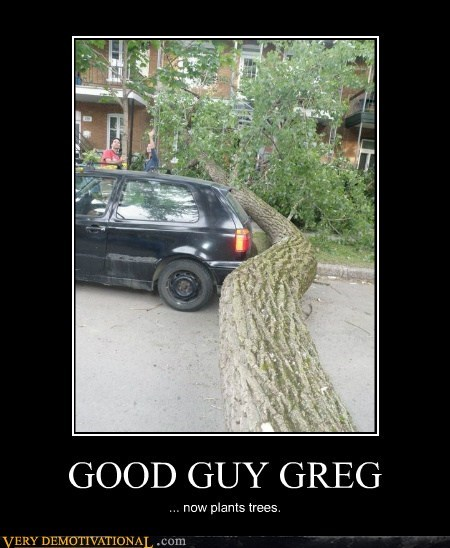 car fell hilarious missed tree wtf - 5908981504