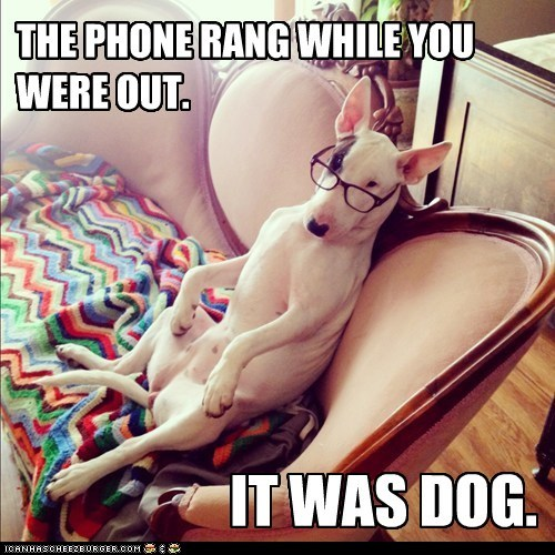 THE PHONE RANG WHILE YOU WERE OUT. IT WAS DOG.