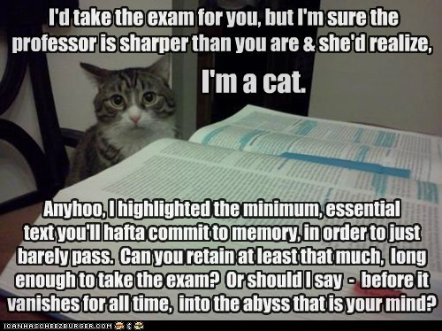 I'd take the exam for you, but I'm sure the professor is sharper than you are & she'd realize, I'm a cat. Anyhoo, I highlighted the minimum, essential text you'll hafta commit to memory, in order to just barely pass. Can you retain at least that much, long enough to take the exam? Or should I say - before it vanishes for all time, into the abyss that is your mind?