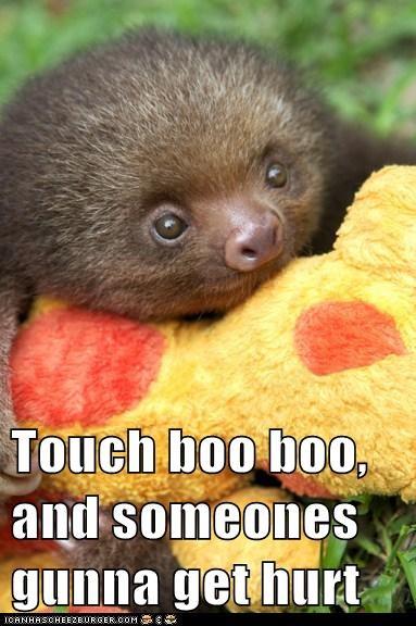 baby cuddle cute defend fight friend hug hurt sloth