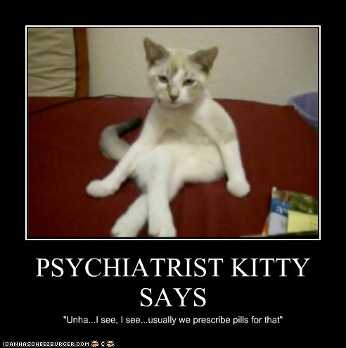 Lolcats Lol Cat Memes Funny Cats Funny Cat Pictures With
