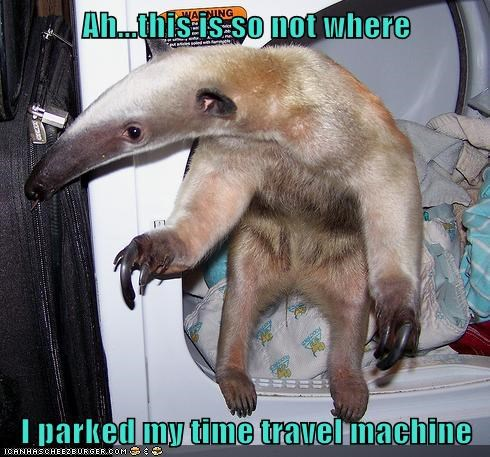 anteater,this-isnt-where-i-parked,this-isnt-where-i-parked-my-car,time machine,time travel