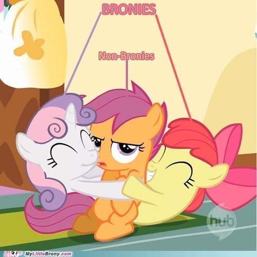 Bronies happy love and tolerate non-bronies ponies warm - 5911324672