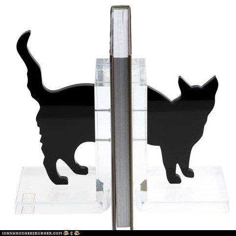 awesome bookends books Cats cute products reading win - 5911885824