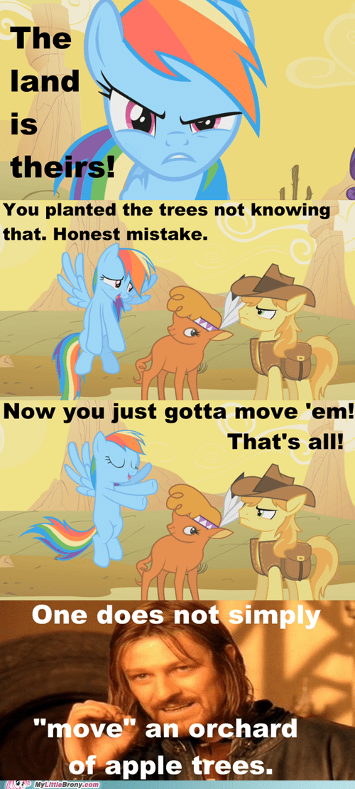 apple tree,comic,comics,honest mistake,one does not simply,rainbow dash