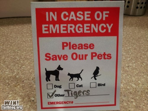 emergency pet pets sign veteranarian - 5913452288