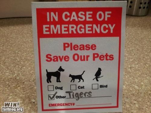 emergency pet pets sign veteranarian - 5913452288